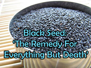 http://www.seattleorganicrestaurants.com/vegan-whole-food/images/Black-Seed-health-benefits.jpg