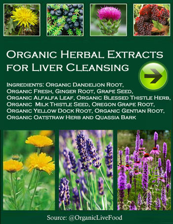 Organic Herbal Extracts for Liver Cleansing