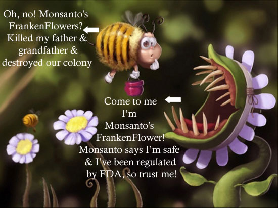 neonicotinoids-pesticide-CCD