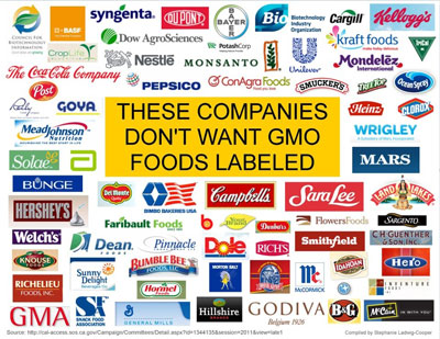ethics and corporations manufacturing and distributing genetically modified foods Genetically modified foods or gm  involved in marketing and distributing food  foods has 66 manufacturing facilities in 32 us states.
