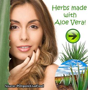 Amazing healing and medicinal benefits of Aloe Vera plant