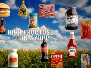 Are genetically modified foods, bovine growth hormones ...