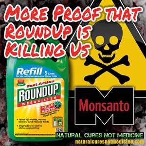 http://www.seattleorganicrestaurants.com/vegan-whole-food/images/popular-weedkiller-roundup-glyphosate-is-linked-to-fatal-kidney-disease-ckdu.jpg