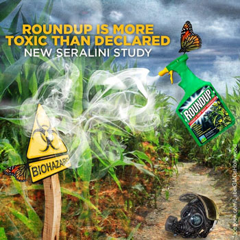 Toxicity Of Glyphosate Herbecide Roundup Monsanto
