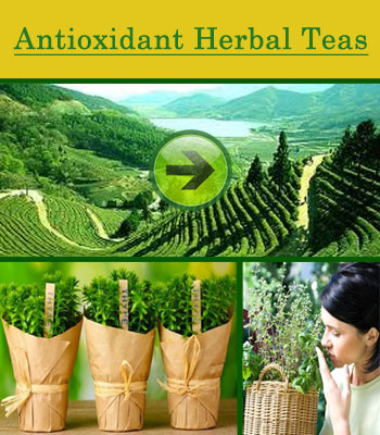 Antioxidant-Herbal-Tea