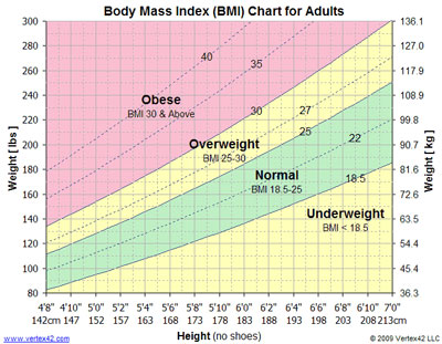 The Obesity Impact On Society