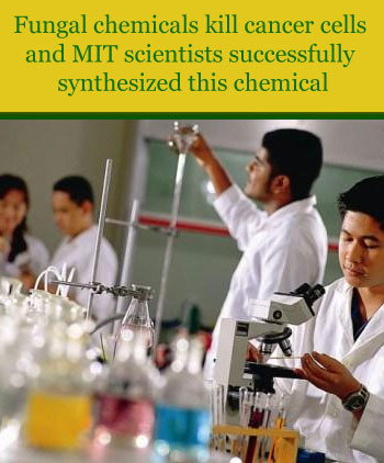 lab 2 the chemistry of life Biochemistry: chemistry of life chemical principles i chemical principles ii introduction to organic chemistry organic chemistry lab ii organic chemistry.