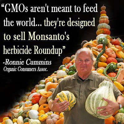 case study monsantos roundup Gmo case studies leave a reply by however studies have found very high levels present in pregnant women and their babies soy and monsanto's roundup.
