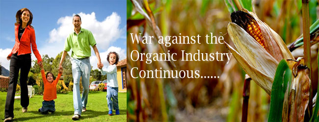 Food Companies Petitioned to Ban New Monsanto GMO Corn -- Health ...