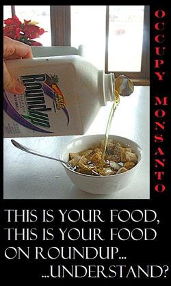 Monsanto french study