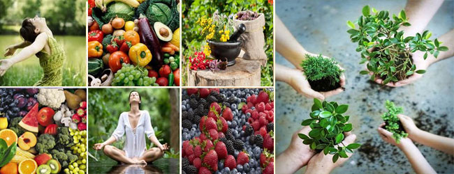 herbs-fruits-vegetables