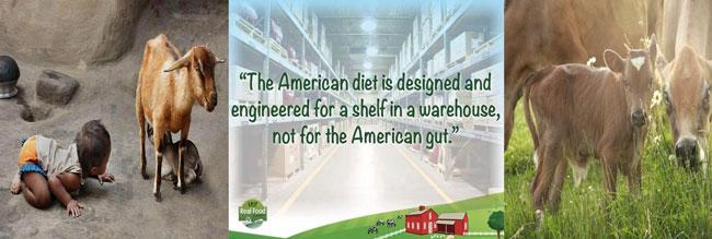 Milk. Raw Whole Milk vs. Homogenized or Pasteurized whole ...