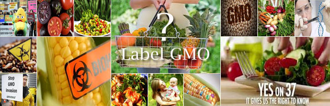 GMO rumble - label them